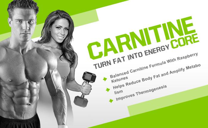 carnitine-banner