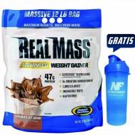 real-mass-1